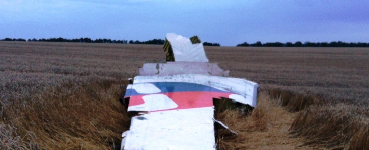 FILE:A picture taken on 17 July 2014 shows the wreckage of MH17 after it crashed near the town of Shaktarsk in rebel-held east Ukraine. Picture: AFP.