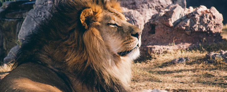 FILE: Picture: Pixabay.com.