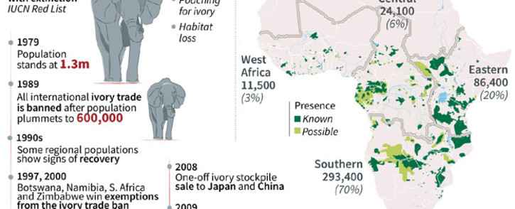 A timeline looking at the dwindling numbers of the African elephant. Picture: AFP