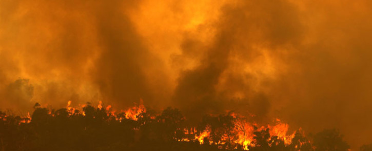A fire driven by strong winds burns on a ridge in the suburb of Brigadoon in Perth on 2 February 2021, forcing emergency evacuations just days after the west coast city entered a coronavirus lockdown. Picture: Trevor Collens/AFP