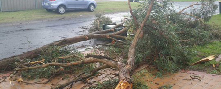 Severe thunderstorms in Sydney on Thursday killed at least one person and injured another, police said. Picture: @GSwinbourne.