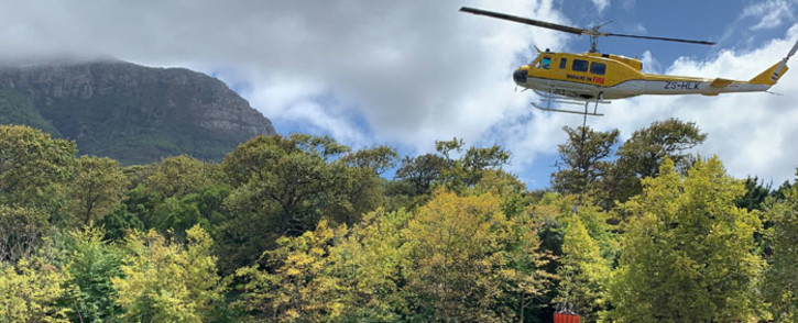 A Working on Fire helicopter demonstrates how it collects water in the Table Mountain National Park area to put out a fire on 26 February 2020. Picture: Kaylynn Palm/EWN