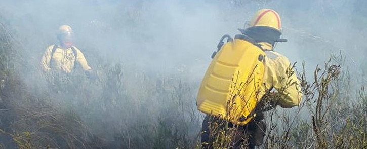 FILE: Working on Fire members battle the Overstrand blaze in the Western Cape. Picture: @wo_fire /Twitter