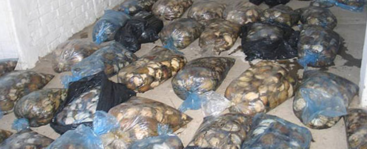 FILE. The man was arrested when officials found the abalone hidden in the vehicle. Picture: Saps
