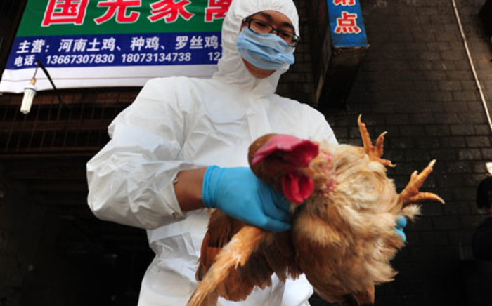 FILE: A woman is critically ill in Hong Kong with the deadly H7N9 strain of bird flu. Picture: AFP