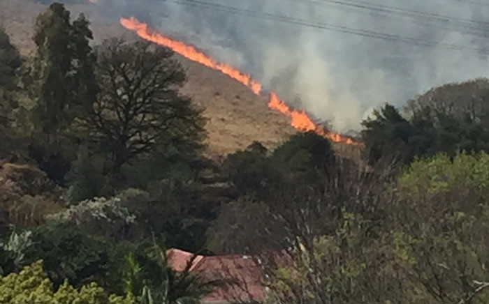 EMS says two fire engines and the grass unit have responded to the fire at Melville Koppies. Picture: Tendo de Paravicini.