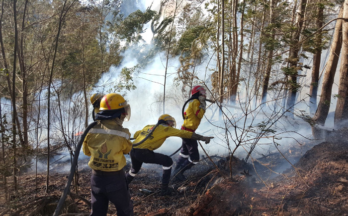 Working on Fire firefighters battle a blaze in Vermaaklikheid, Western Cape. Picture: @wo_fire/Twitter.