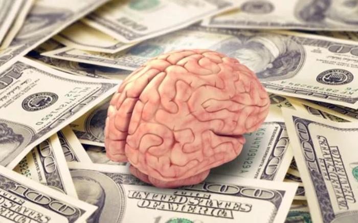 brain-on-dollarsjpg