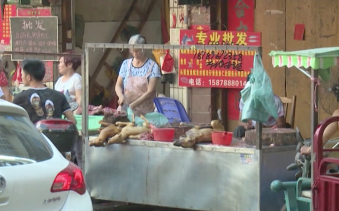FILE: China holds its annual dog meat festival. Picture: CNN.