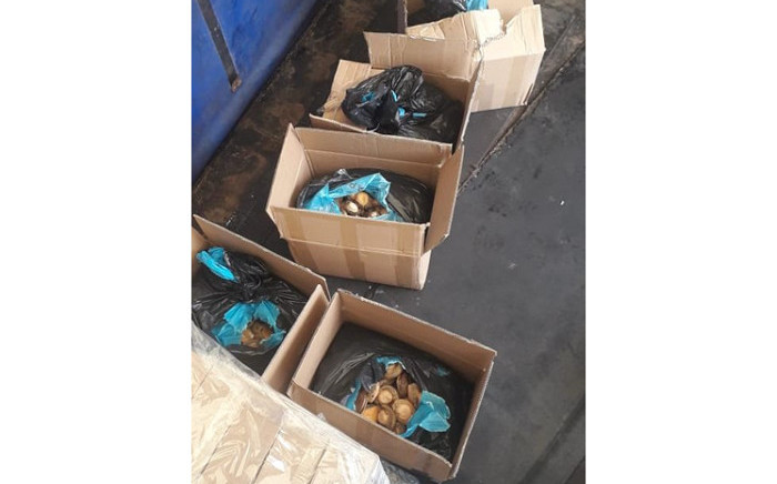 Two males aged 26 and 36 were arrested after they were found in possession of a consignment of abalone with a street value of nearly R2 million on 19 September 2021. Picture: SAPS.