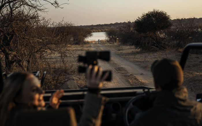 Ranger Stian Loubser (R) points at a lioness while driving a couple of tourists from Johannesburg during a guided safari tour at the Dinokeng Game Reserve outside Pretoria, on 7 August 2020. Picture: AFP