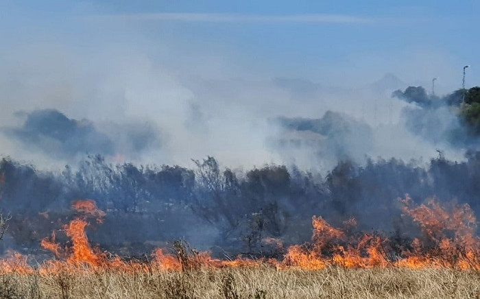 A veld fire at Rondebosch Common, in Cape Twon, has been extinguished on 21 January 2021. Picture: Supplied.