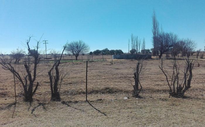 A view of a farm. Picture: EWN