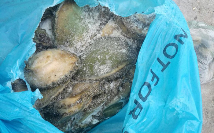 FILE: Abalone seized by police. Picture: SAPS
