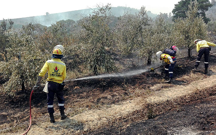 FILE: Firefighters extinguish a fire in Helderberg on 4 January 2015. Picture: @CPFPA1.