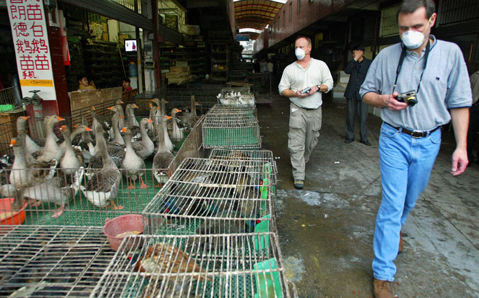 FILE: World Health Organisation officials inspect a wildlife animal market where selling civet cats in southern capital of Guangzhuo, 10 January 2004. Picture: AFP