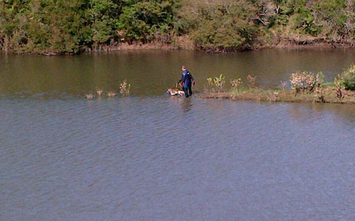 FILE: A rescue personnel and his dog are seen in Bridle Drift Dam. Picture: SAPS.