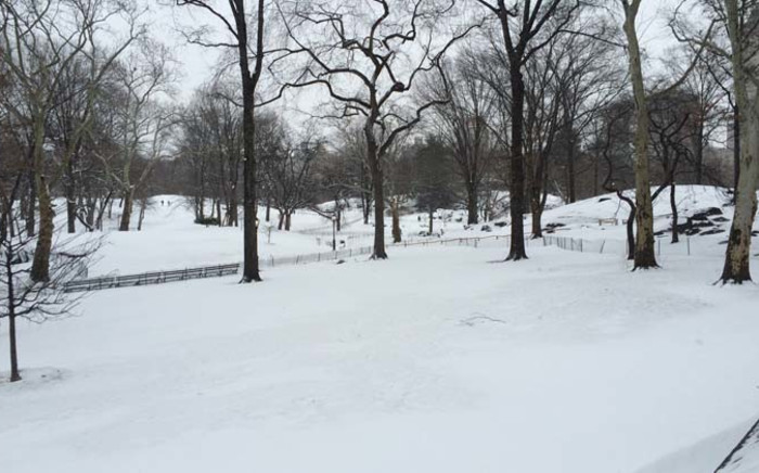 FILE:A park in New York is covered in snow after a blizzard swept across the northeastern United States. Picture: Annwen Quilliam.