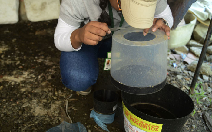 FILE: A researcher checks mosquito traps in the Paris neighborhood, Bello municipality, Antioquia department, Colombia on January 26, 2016. Picture: AFP