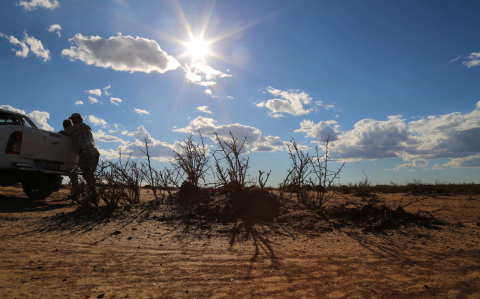 FILE: Farmers assess the damage caused by the drought in Reddersburg, Free State. Picture: Christa Eybers/EWN