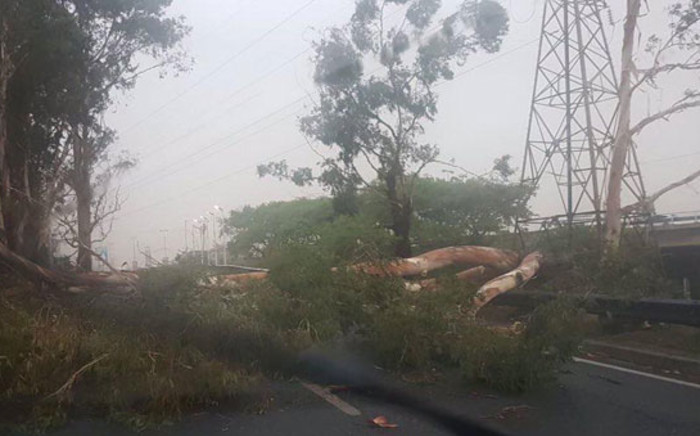 Debris lies in the road in Johannesburg following a storm on 5 November 2018. Picture: Johannesburg EMS