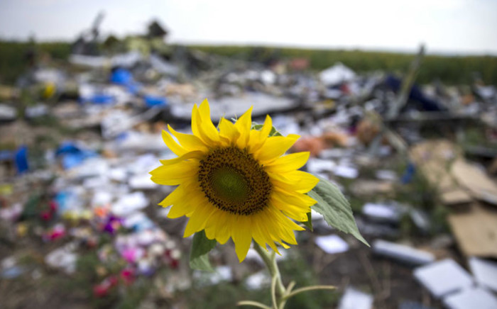 A sunflower in between the debris of Malaysia Airlines Boeiing 777, near the village of Rozsypne in Eastern Ukraine. Picture: EPA.