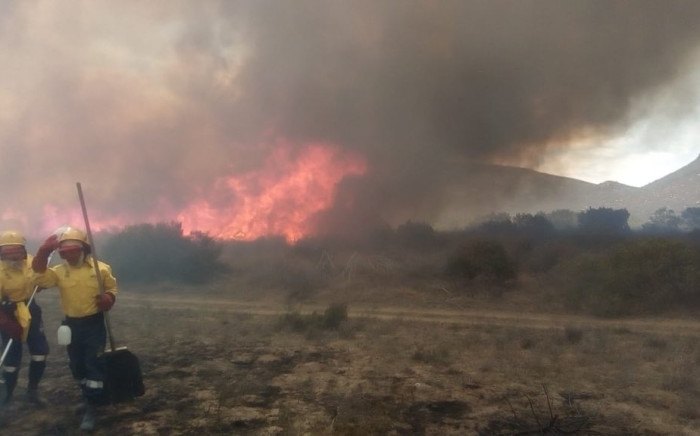 Working on Fire members seen at the Blue Hippo farm in Greyton area amid a mountain blaze. Picture: @wo_fire/Twitter