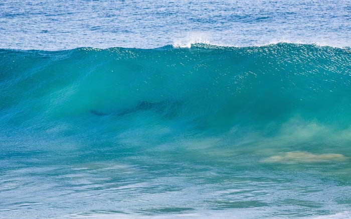 The J-Bay Open was suspended after officials spotted a shark entering the competition zone. Picture: World Surf League.