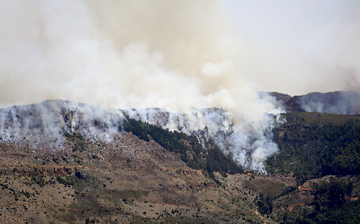 Trees go up in smoke on the slopes of the Silvermine Nature Reserve on 2 March 2015 as wildfires burn in Cape Town. Picture: Aletta Gardner/EWN.