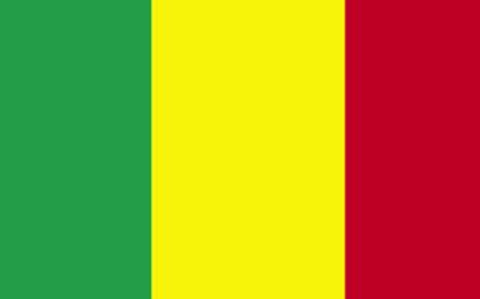 Mali's flag. Picture: AFP