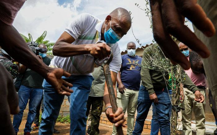 African National Congress (ANC) secretary-general Ace Magashule plant trees in Soweto, Johannesburg on 31 March 2021. Picture: Boikhutso Ntsoko/Eyewitness News