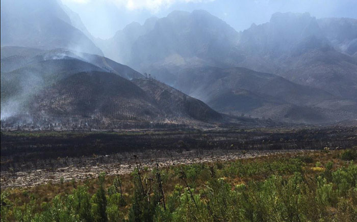 Fire crews have been brought in from the Eastern and Southern Cape to assist with the Jonkershoek blaze in Stellenbosch on 10 March 2015. Picture: Natalie Malgas/EWN