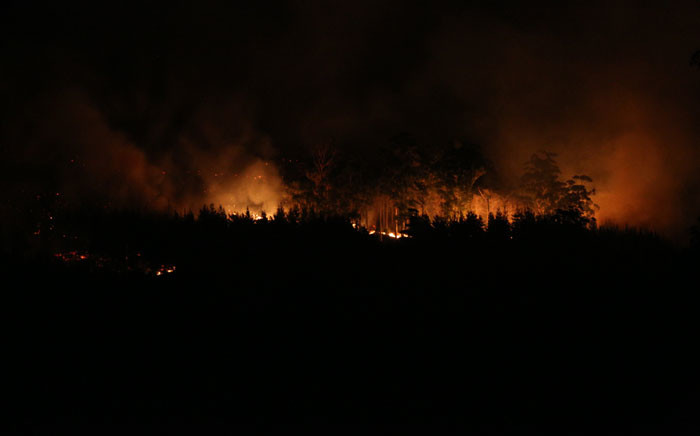 FILE: Fire burns trees in its in way. Picture Stephen Phillipson/EWN