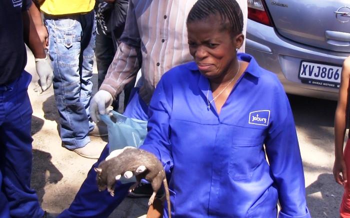 MMC of Health and Social Development Nonceba Malwele addresses the media in Alexandra about Johannesburg's rat problem on 30 September 2014. Picture: Reinart Toerien/EWN.