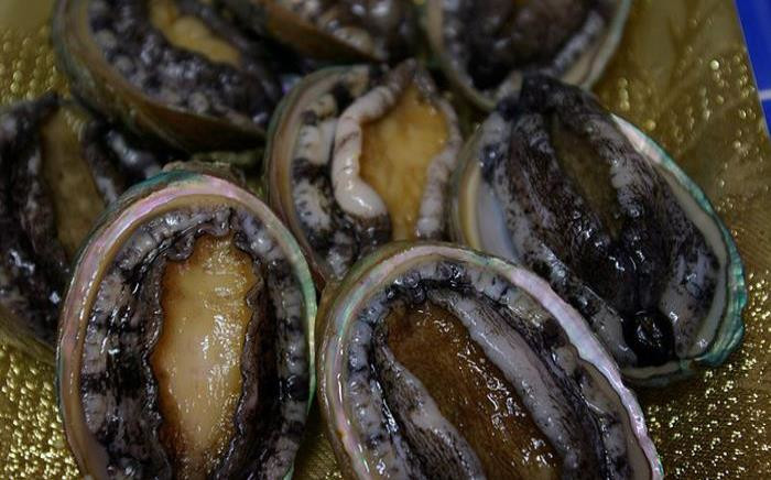 Abalone meat in South Africa is prohibited for sale to help reduce poaching. Picture: Wikimedia Commons.