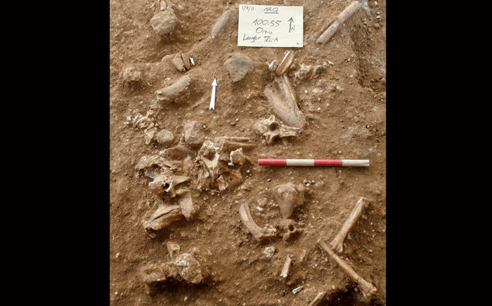 """A pictured released by Tel Aviv University and the Hebrew University of Jerusalem on 24 June 2021 shows the site of excavations in the quarry of a cement plant near the central city of Ramla in which researchers uncovered prehistoric remains that could not be matched to any known species from the Homo genus. Bones belonging to a """"new type of early human"""" previously unknown to science have been found in Israel, researchers said Thursday, claiming to have shed new light on human evolution. Picture: Tel Aviv University / AFP"""