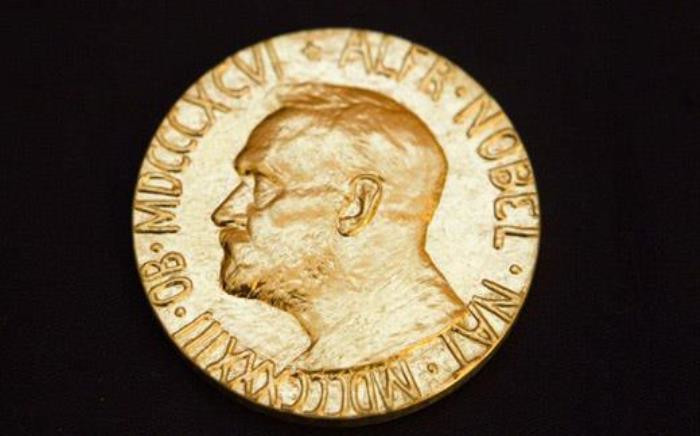 The Nobel Peace Prize 2013. Picture: AFP