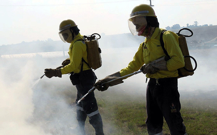 Working on Fire members attend to a blaze. Picture: @wo_fire/Twitter
