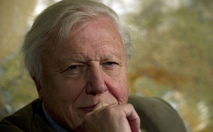 FILE: British broadcaster David Attenborough in November 2011. Picture: AFP.