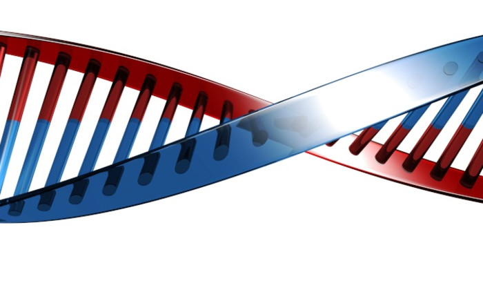 FILE: DNA. Picture: Freeimages.com