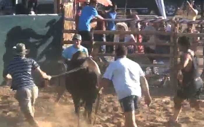 FILE: Evidence from previous rodeos was presented to demonstrate the show cruelty of this activity. Picture: EWN.