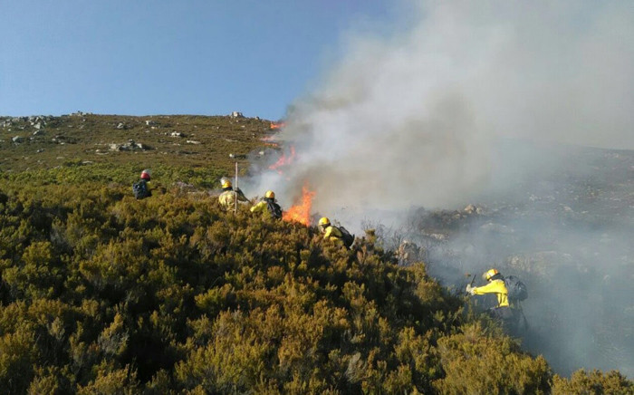 Firefighters from Working on Fire, Southern Cape Fire Protection Association and Eden District battle the blaze at the Middle Keurbooms Private Conservancy. Picture: Xolani Koyana/EWN.