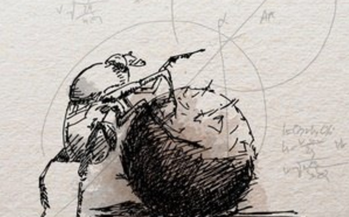 Wits finds dung beetles inform AI