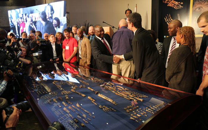 Deputy President Cyril Ramaphosa at the unveiling of the Homo naledi fossils. Picture: Christa Eybers/ EWN.