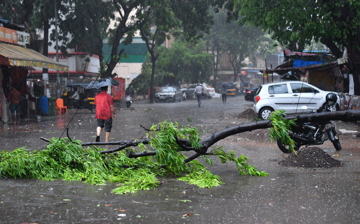 A man walks past a fallen tree on a street following heavy rains from Cyclone Tauktae in Mumbai on May 17, 2021. Picture: Indranil Mukherjee / AFP