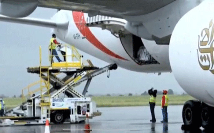The first one million doses of COVID-19 vaccine arrived at the OR Tambo International Airport on 1 February 2021 from the Serum Institute of India. Picture: Screengrab