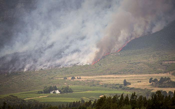 A fire rages on the Simonsberg mountain 20 January 2016. Picture: Aletta Harrison/EWN.