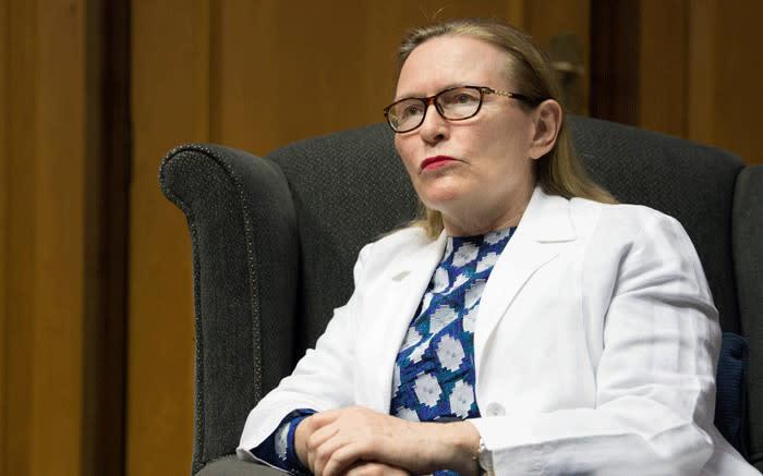 Helen Zille: As die DA sterf, sterf Suid-Afrika se demokrasie - EWN