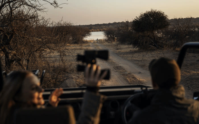 Local tours bring some relief to SA's safari industry - EWN