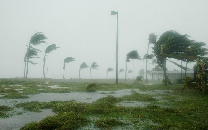 Cape Town on high alert after strong winds wreak havoc - Eyewitness News
